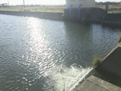 釣り場の写真